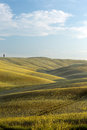 Tuscan horizon view on the wide with cypress trees in the rolling hills of tuscany near pienza Royalty Free Stock Photo