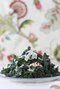 A tuscan kale salad with parmesean cheese and almonds Stock Photography
