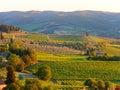 Tuscan landscape beautiful during sunset Stock Photos