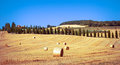 Tuscan landscape filed with hay bales in foreground and cypress trees in background Royalty Free Stock Photo