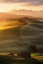 Tuscan Landscape in Sunrise Light Stock Image
