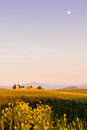The Tuscan Landscape, Vitaleta chapel Church Royalty Free Stock Photo