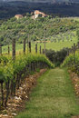 Tuscan Villa and Vineyard Stock Photography