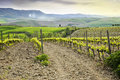 Tuscan vineyard the beautiful countryside with a Royalty Free Stock Images