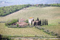 Tuscan vineyards Royalty Free Stock Photo