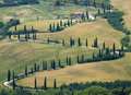 TUSCANY countryside, devious street with cypress Royalty Free Stock Photos