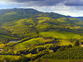 Tuscany countryside tuscan hilly with vineyards in the foreground in autumn Royalty Free Stock Photography