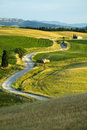 TUSCANY FARM WHIT ROAD Royalty Free Stock Image