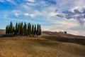 Tuscany Italy Cypress hill Royalty Free Stock Photo
