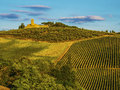 Tuscany italy hills in during the october grape harvest Royalty Free Stock Photo