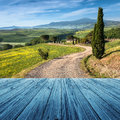 Tuscany italy landscape in with wood floor Stock Photos