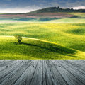 Tuscany italy landscape in with wood floor Royalty Free Stock Images
