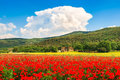 Tuscany landscape with field of red poppy flowers and traditional farm house Royalty Free Stock Photo