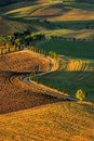 Tuscany landscape panorama hills and meadow toscana italy Stock Photos