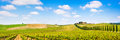 Tuscany landscape panorama with vineyard in the chianti region tuscany italy panoramic view of scenic Stock Image