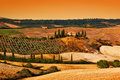 Tuscany landscape at sunset. Tuscan farm house, vineyard, hills. Royalty Free Stock Photo