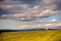 Tuscany landscape typical tuscan countryside with and meadow Royalty Free Stock Photos