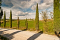Tuscany view of scenic landscape with road and cypress alley chianti region italy Stock Images