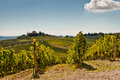 Tuscany view of scenic landscape with vineyard in the chianti region italy Royalty Free Stock Images