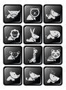 Twelve icon wildlife in dimension glossy button design