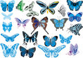 Twenty one blue butterflies Stock Photos