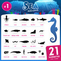 Twenty one Sea animal silhouettes part.1