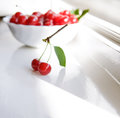 Twig with two cherries Stock Photography