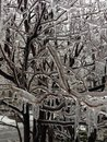 Twigs encased in ice after a night of freezing rain tree branches the toronto storm Royalty Free Stock Photo