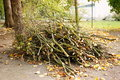 Twigs pile at a park Stock Images