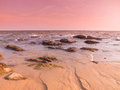 Twilight pink tone on the beach include many rocks Royalty Free Stock Photo