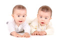 Twin babies cute isolated in white background Royalty Free Stock Image