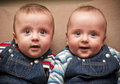 Twin boys in overalls looking at the camera Royalty Free Stock Image
