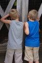 Boys at Barnyard Fence Royalty Free Stock Photo