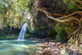 Twin falls wilderness lush and green of maui hawaii a great attraction on the road to hana where you can swim under the Royalty Free Stock Image