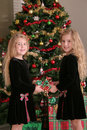 Twin sisters sharing a present vertical Stock Photography