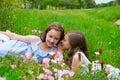 Dvojča sestry šepkanie ucho na jar kvety lúka