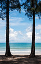 Twin trees and blue sea Royalty Free Stock Photo