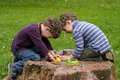 Twins play with animation identical sit on the stump of the tree and they are laughing they dressed in stripy shirts and trousers Royalty Free Stock Photography