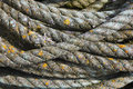 Twisted fibre rope Royalty Free Stock Images