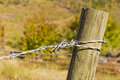 Twisted galvanized fence barb wire on weathered post Royalty Free Stock Photo