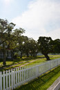 Twisted tree old surrounded by white picket fence Stock Photography