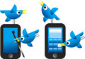 Twitter Birds Royalty Free Stock Images