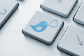 Twitter button concept Royalty Free Stock Photos