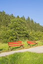 Two abandoned red benches in green forest the woods waiting for someone Royalty Free Stock Images