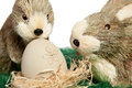 Two adorable little Easter bunnies Royalty Free Stock Image