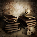 Two ancient skull with lots of books Royalty Free Stock Photos