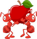 Two Ants Cartoon Holding Red A...