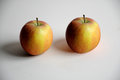 Two apples fresh rubinette a very old sort of Royalty Free Stock Images