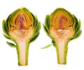 Two Artichoke Halves Royalty Free Stock Photo