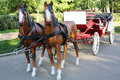 Two artificial sledge of horses harnessed wagon in park at summer day Stock Images